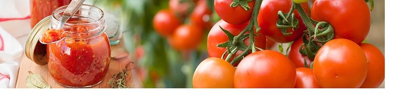 Analyse de l'acide lactique total dans la tomate